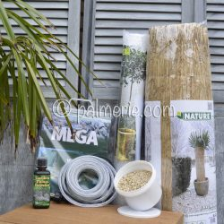actiepakket winterbescherming palmboom XL+voeding