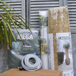 actiepakket winterbescherming palmboom XXL