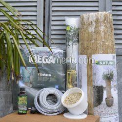 actiepakket winterbescherming palmboom XXL+voeding